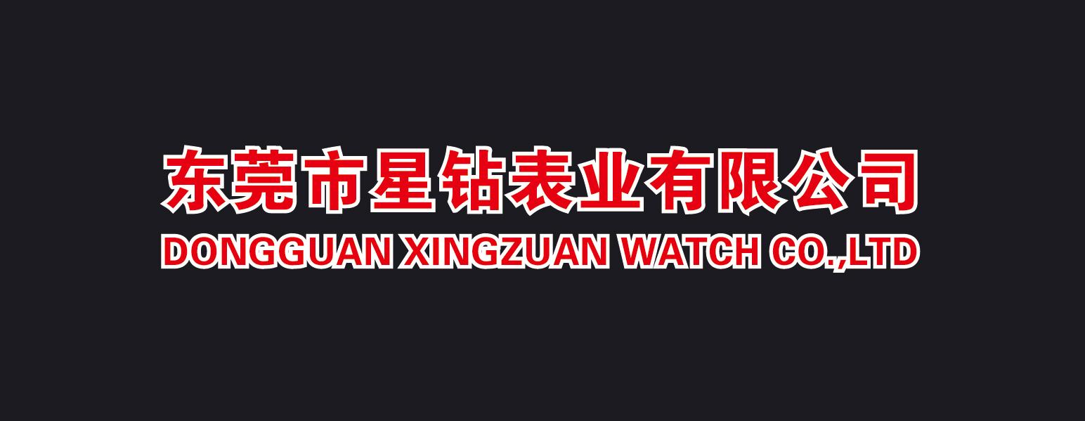 深圳市星钻表业有限公司