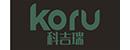 滁州市科吉瑞智能科技有限公司